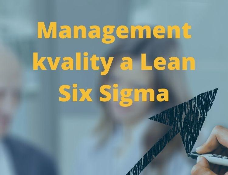 Video vedlejší specializace Management kvality a Lean Six Sigma