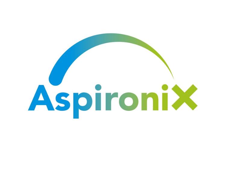 Aspironix hledá kandidáty na CEO Executive Assistant