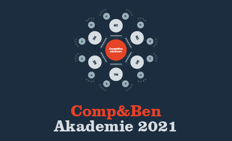 Do konce zimního semestru 2020/2021 bude výuka na VŠE probíhat online formou